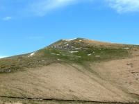 Alpeggio ai margini del Tremezzo