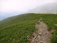 L'inizio del sentiero che scende in Val Colla dalla sommità del Monte Gazzirola