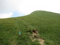 Il sentiero che scende in Val Colla dalla sommità del Monte Gazzirola