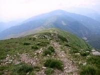 Il sentiero che scende in Val Colla dalla sommità del Monte Gazzirola - Traccia quasi impercettibile