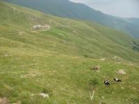 Alpe di Pietrarossa