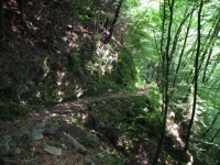 Ascesa al Generoso in single-track