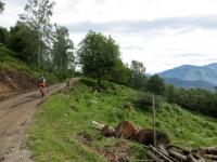 Forestale per l'Alpe di Torricella