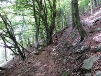 Sentiero che sale dall'Alpe di Torricella a La Bassa