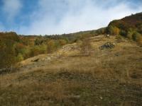 Alpe Arasio