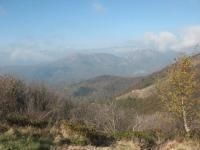 Vetta del Monte Lema - panorama (Alpe Arasio in primo piano)