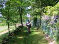 Nei boschi tra Casalzuigno e Cittiglio
