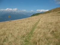 Sentiero che conduce al Monte Paglione dalla sella sotto il Monte Covreto