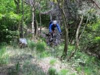 Discesa su sentiero dalla vetta del Monte Pian Nave in direzione di Pian Cuvinic