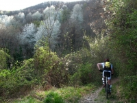 Single-track - anello del San Genesio