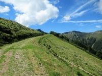 Tratto iniziale di salita al Tamaro lasciata l'Alpe Foppa