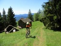 Nei prati dell'Alpe Ad Vel
