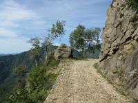 In direzione del Passo Folungo lungo le pendici del Monte Bavarione