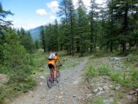 Il sentiero della Via Vecchia Sagnalonga-Bousson