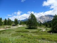 salendo verso Col Saurel, bel contesto alpino