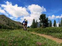 Il bellissimo e divertente sentiero che scende nella Val Gimont