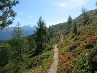 Sentiero per Moosalp