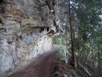 Bella mulattiera/sentiero in direzione di Schwarzwald/Obermatten