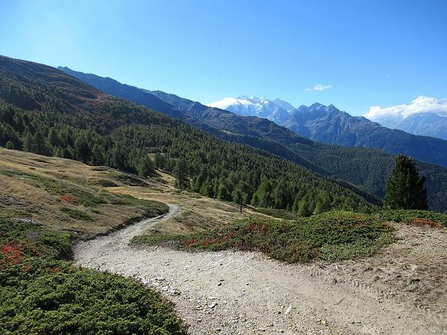 Sentiero che sale al Gibidumpass - Sullo sfondo a sx il Mischabel, a dx il Weisshorn