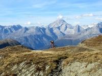 In direzione del Bistinepass - sullo sfondo il Bietschhorn (3.934)