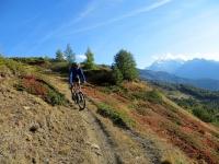 Il sentiero che scende dal Gibidum (Panoramaweg) - Fantastici colori autunnali