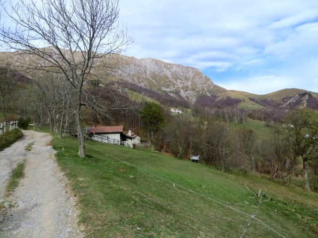 Lo sterrato che sale alla Alpe Cova