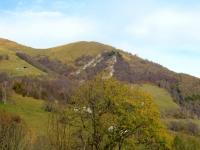 Salita all'Alpe Cova - in alto San Calimero ci attende