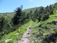 Single track in quota per il Lago Bruno
