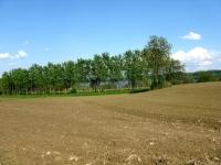 Parco Naturale del Lago di Candia Canavese