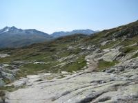 Il sentiero per il Grimselpass  che si snoda tra massi e verdi alpeggi