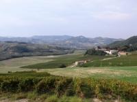 Nei dintorni di Calvignano