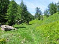 Sentiero per il Passo Cantonill