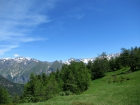 Pian Curnicc - panorama a nord