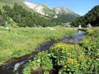 Alpe Pertusio