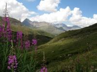 Salendo verso il Passo Invergneux - panorama