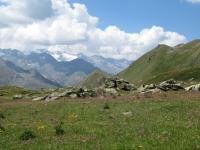 Gran Paradiso dal sentiero che porta al Passo Invergneux