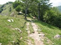 Single track in direzione de Il Colle
