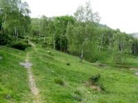Single-track in direzione Alpe Murecc
