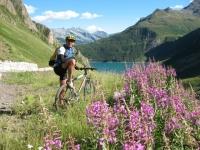 In discesa dalla Baettelmatt Alp