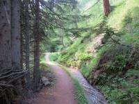 Facile sentiero tra Stafel e Rosswald