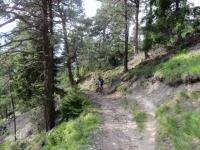 Discesa da Rosswald, ottimo e divertente trail per Riederwald