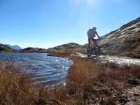 Laghetto Alpino in direzione del Passo del San Bernardino - particolare