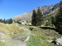 Sentiero per l'Alp de Pian Doss