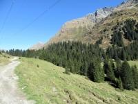 Lo sterrato che prosegue dopo l'Alp de Pian Doss