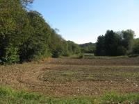 Paesaggio agricolo nei pressi del lago di Bertignano