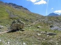 Trail di discesa in Val Suvretta - sullo sfondo il Passo Suvretta