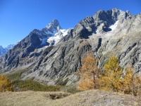 Val Ferret - Vista su Grandes Jorasses