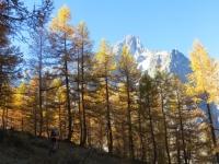 Colori autunnali percorrendo il trail d'alta quota in direzione del Rifugio Bertone