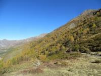 Val Ferret - il sentiero che collega il Rifugio Bonatti con il Rifugio Bertone