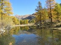 Val Ferret - nei pressi di Arpnouva